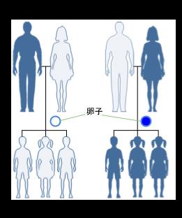 3F45DF94-46E4-11E4-B445-7DF2048D85C2_o