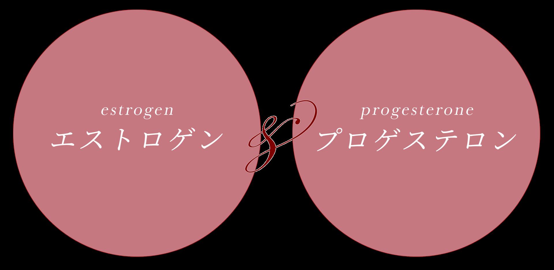 エストロゲン&プロゲステロン