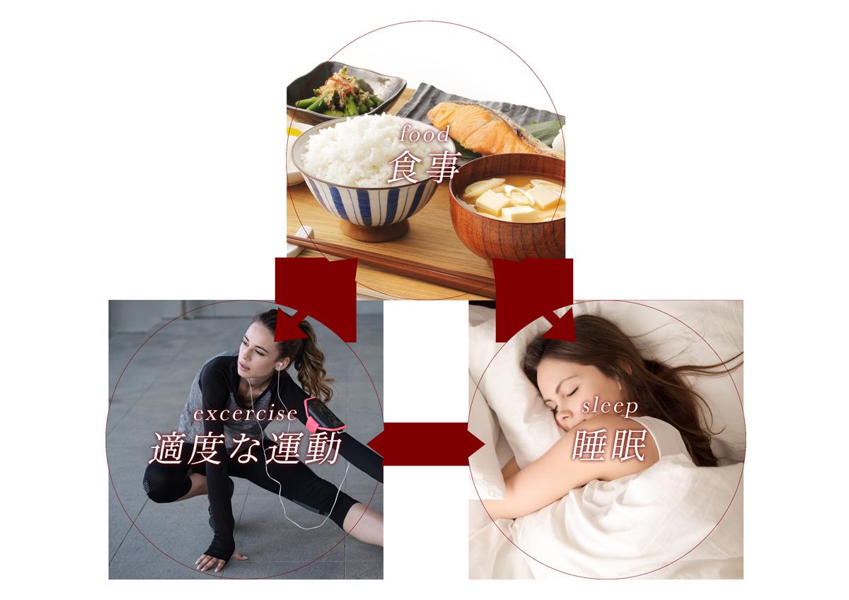 食事、適度な運動、睡眠